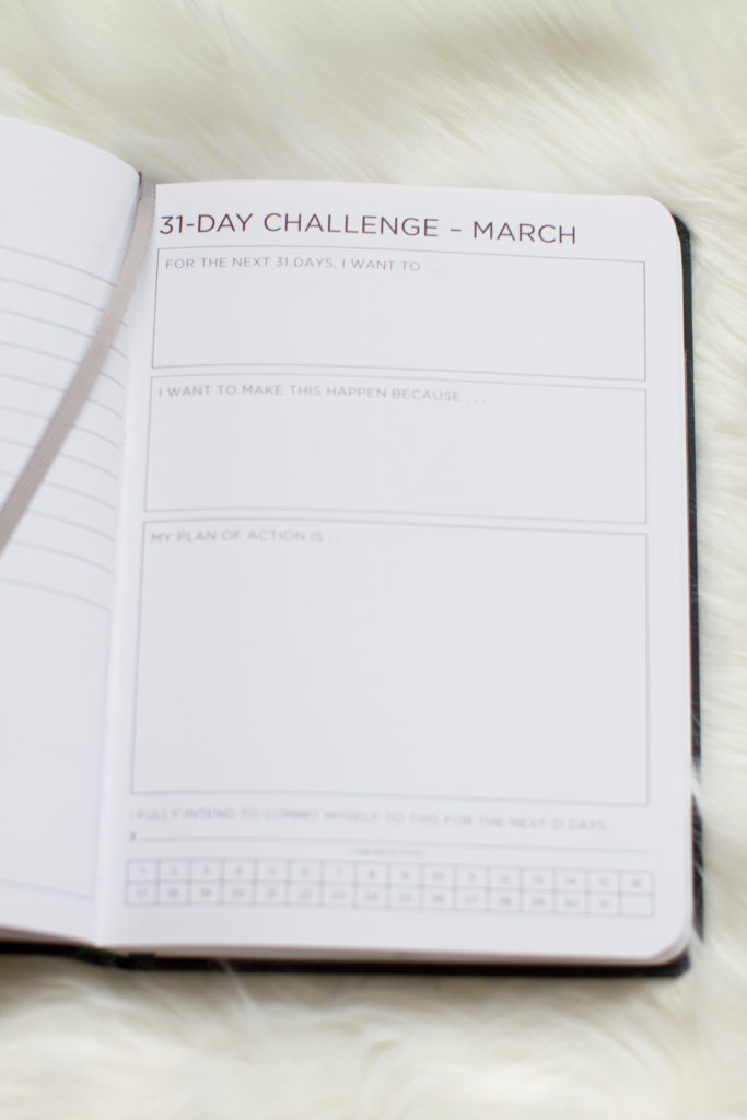 31 Day Challenge Ink+Volt Planner